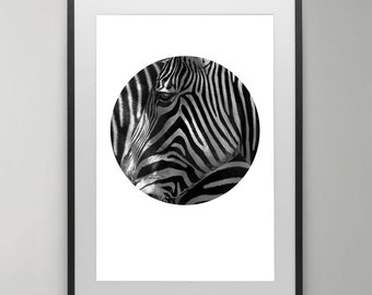 Zebra Print, Animal Photography, African, Safari, Animal Prints, Black and White Animal, Zebra Wall Art, Instant Download, Home decor.