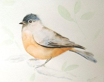 Bird painting, Original watercolor painting of bird, watercolor bird painting, bird on branch painting, bird art original, bird lover decor