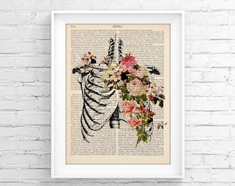 Anatomy print Upcycled Page, book Print Vintage Illustration Print - Skeleton - Medical Wall decor, Retro Poster, Vintage Book print 032