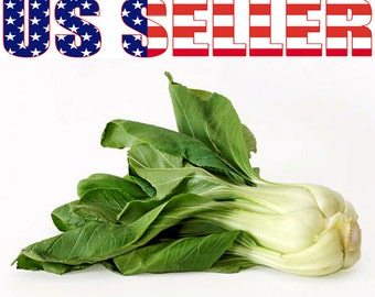 200+ ORGANIC Canton Pak Choi Bok Choy Chinese Cabbage Seeds Heirloom NON-GMO