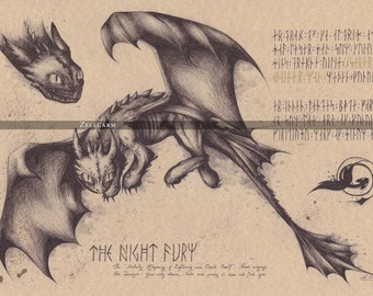 Medium - Toothless - How to train your dragon Art Print