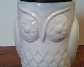 Ceramic owl planter with faux succulent
