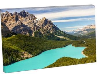 FO0425 Print On Canvas Peyto lake Banff National Park CANADA Canadian Rockies