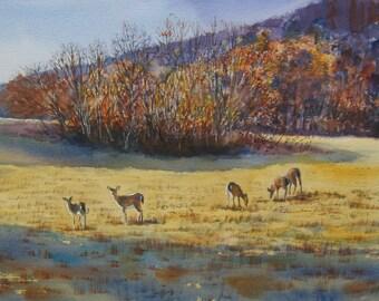 Watercolor Landscape, Watercolor Print, Deer in Meadow, 12 x 18 inch Print, Hudson Valley Art, Hudson Valley Print, Golds, Rusts,