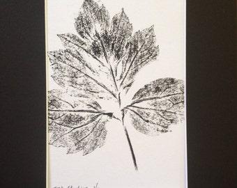 Leaves of Spring Monoprint #2