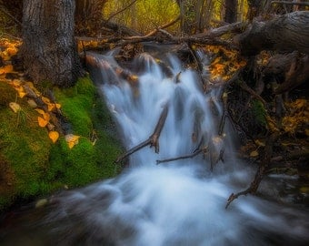 Little Falls - Fall colors on McGee Creek in the Eastern Sierras