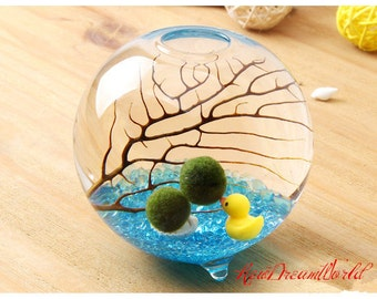 """Marimo Aquarium Kit With 3.5"""" Miniature Footed Orb Vase Container/Moss Ball/Stone/Sea Fan/Home Decor/Office Gift/Unique Gift For Him"""