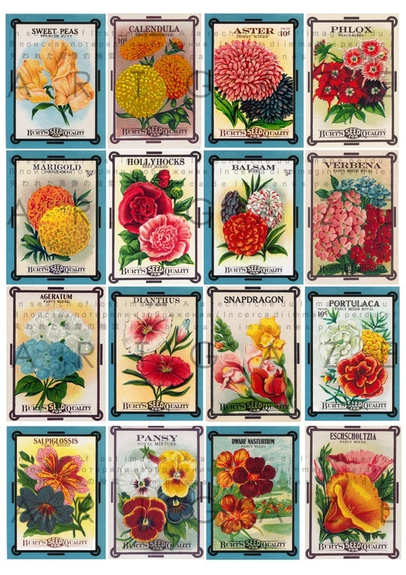 Vintage Flower Seed Packets Art Deco Collage Sheet 16 Labels