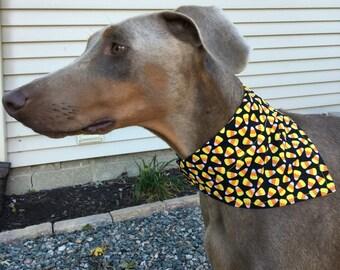 Med/Large Candy Corn Dog Bandana