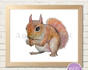Squirrel Art Squirrel Print Baby Animal Print Woodland Nursery Decor Squirrel Watercolor Painting Woodland Animal Forest Wildlife Creatures