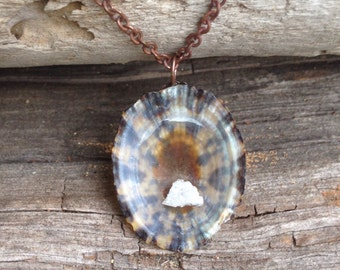 Seashell necklace, shell necklace, natural jewelry, crystal necklace, crystal pendant Shell from the caribbean with a touch of natural cryst