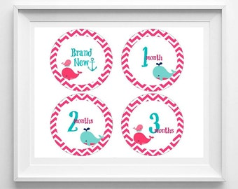 baby monthly milestone stickers, printable milestone stickers