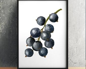 Food print Blackcurrant art Berries poster Kitchen print ACW478
