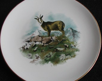 Collectable 1963 Royal Worcester Mountain Goat Plate