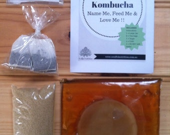 My Pet Kombucha (starter kit) without jar