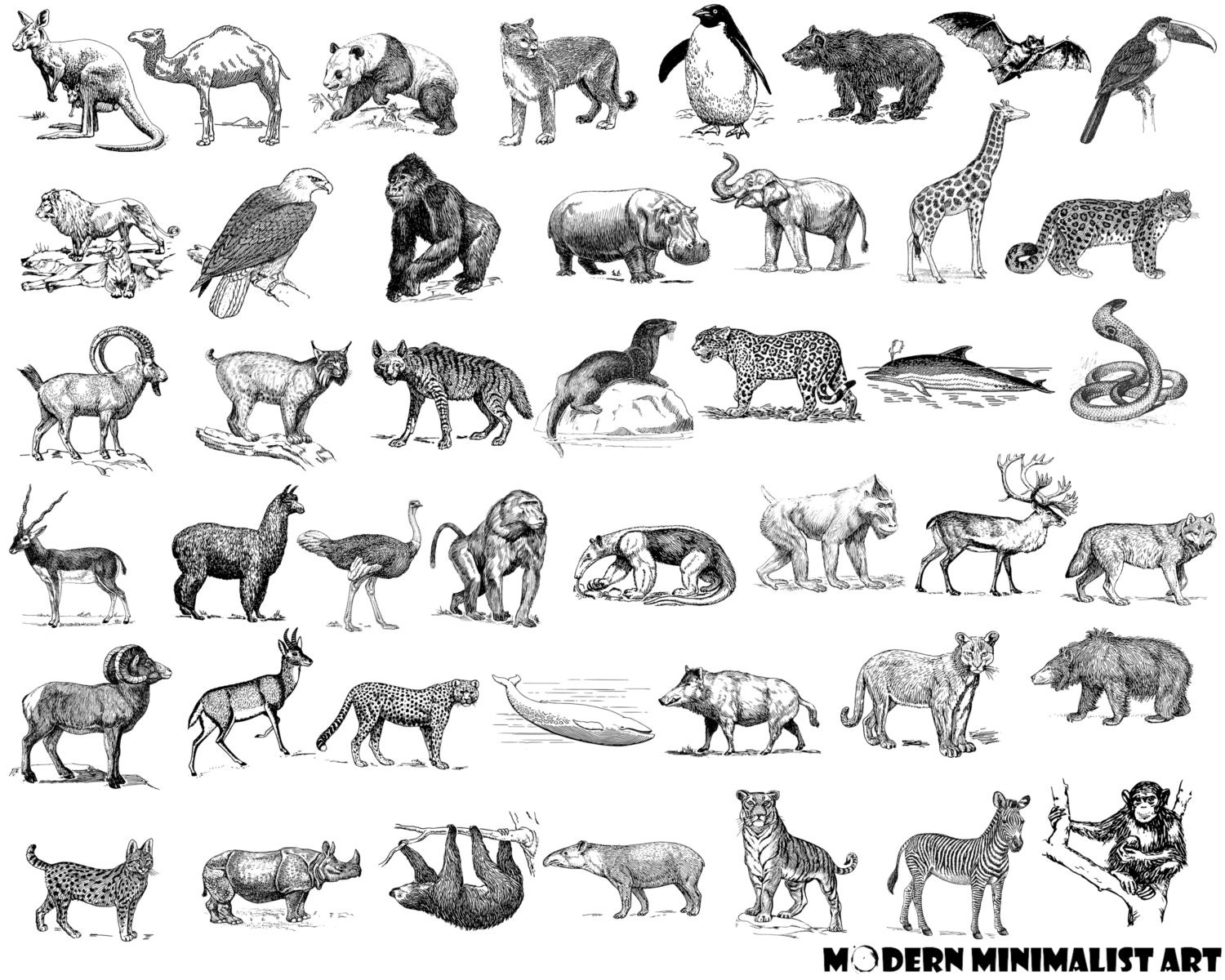 Arrow Clipart Black and White– 44 PNG Images from ...