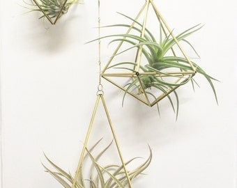 Geometric Planter Set of 3 With Airplant
