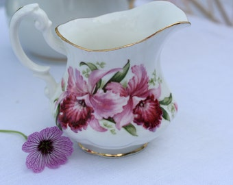 Paragon: creamer pink orchids (damaged)