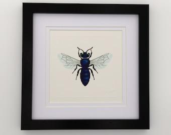 Queensland Masked Bee Unframed Miniature Print x 1