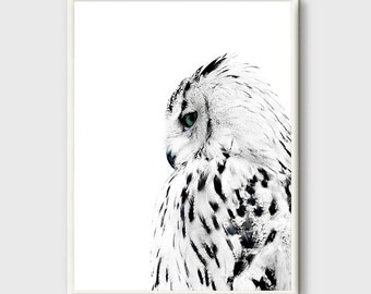 Owl Print, Black and white Photo, Owl modern poster, Animal Minimalist poster, wilderness Animals, wild animals, Owl Home Decor, Modern Art