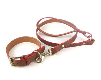 Matching Tan Leather Dog Collar and Leash set with brass hardware