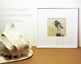 Original Watercolor of Sandpiper, Shorebird Art, Small Watercolor Painting by Ezartesa