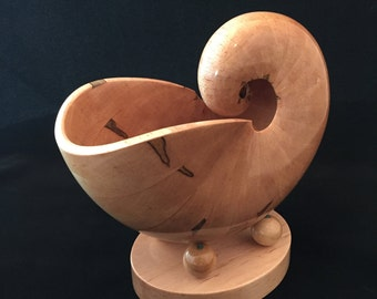 Nautilus Spiral Wood Shell Art