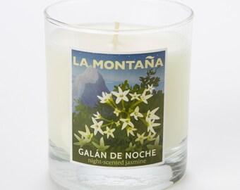 Galán de Noche - night-scented jasmine scented candle