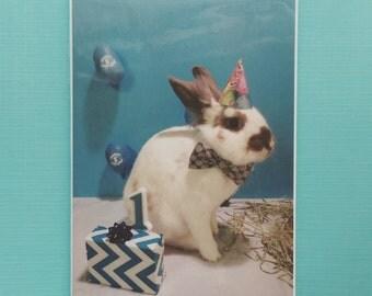 Rabbit Birthday Greeting Card