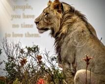 Lion art printable, Animal prints, African Safari prints, African Safari animals, Safari printable, Wall art quotes, Quote print, Safari art