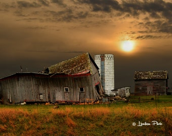 Two Red Barns # 41