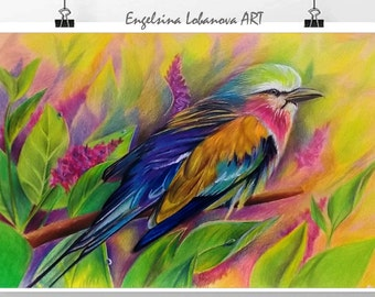 Pencils,Drawing,Realistic  colored pencil drawing techniques,Fashionable bird in bright colors