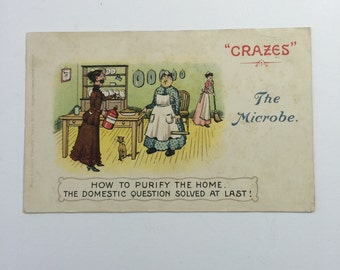 The Microbe Edwardian Postcard