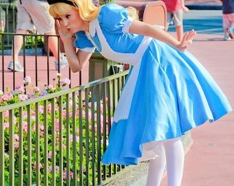 Alice in Wonderland Alice Cosplay Costume Park Version