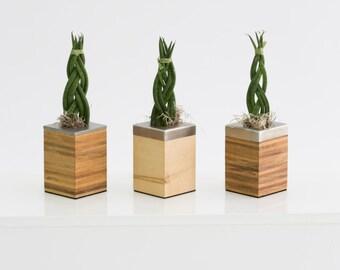 www.Sub-way.fr - planter / vase
