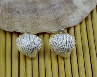 Shell earrings in 925 sterling silver