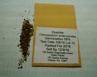 Epazote 150 Organically Grown Seeds