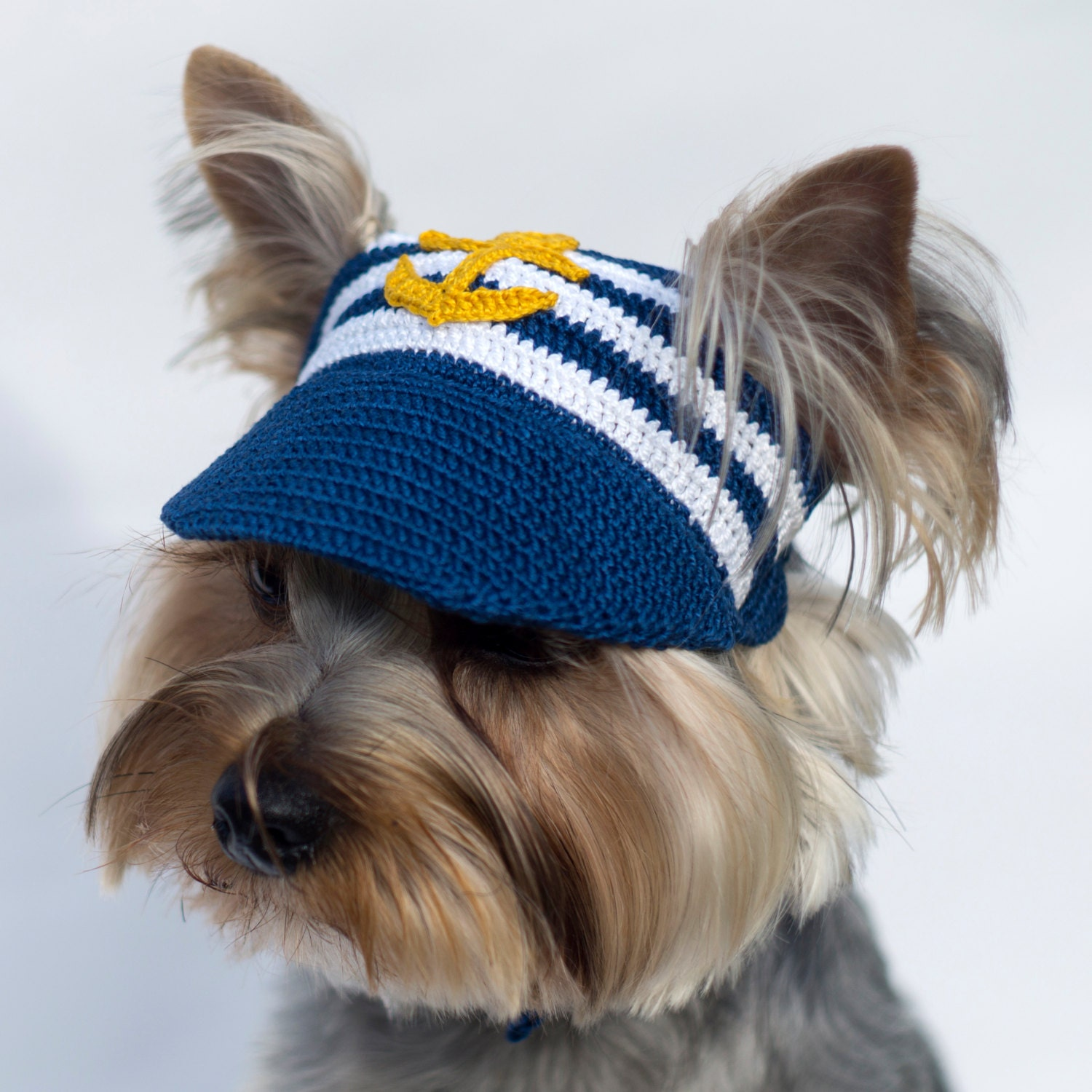 Puppy Dog Hat Knitting Pattern : Dogs Baseball Cap Anchor / Hats For Dogs