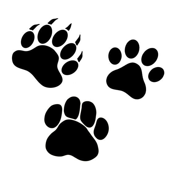 bear paw svg hundepfote und katze tatze svgdateien