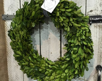 "Preserved Boxwood Wreath - 14"" w/ striped ribbon accent"