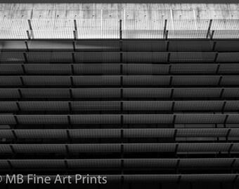 Fine Art Black and White Giclee Print