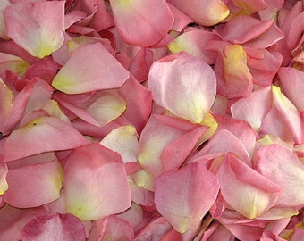 Enchanting Pink Rose Petals. 10 cups. Freeze-dried Rose Petals. Wedding Petals. Flower Petals. Flower Girl Petals. Flower Confetti.  USA