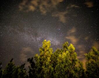 Florida Night's Sky