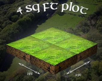 4 sq ft Plot Irish Land