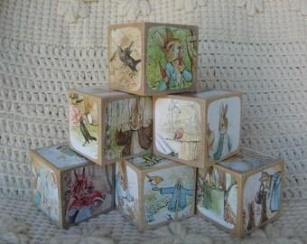 World of Peter Rabbit Picture Book Wooden Blocks