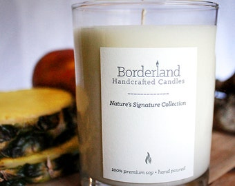 Tropical Driftwood, 10oz Handcrafted Soy Candle
