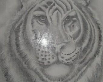 Charcaol Pencil Sketch