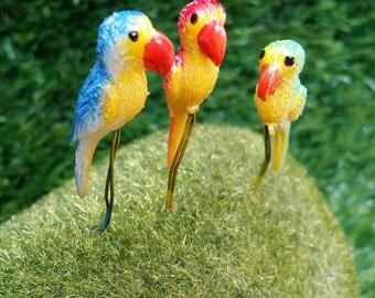 5 Tiny Mixed colors parrot Picks Miniature Dollhouse Fairy Garden /Set