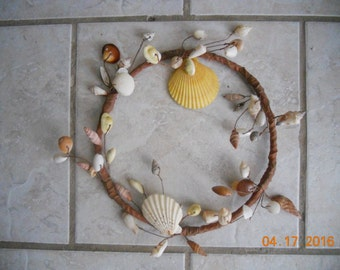 Sea Shell for the Wall