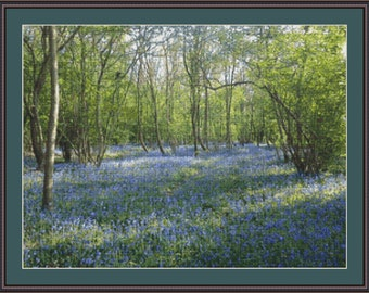 Bluebell Wood Cross Stitch Chart - Limited Release of 50